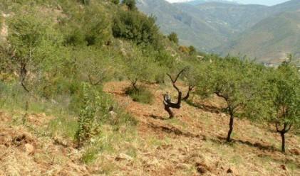Земята в Испания поевтинява със 7.5% за Q3