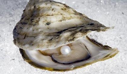 Френски пенсионер откри перла в коледното си меню