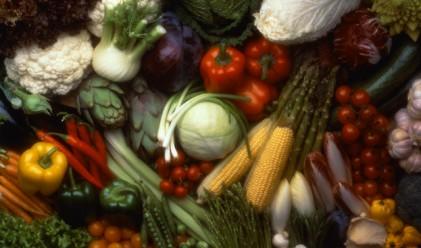 Спад на основните хранителни стоки през ноември