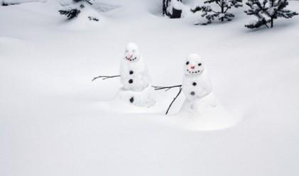 Зимата настъпи в 7.30 часа, снегът- само за Коледа