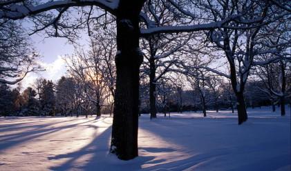 Какви температури ни чакат през януари