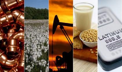 Суровините се насочват към втори годишен спад