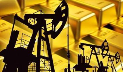 Какво да очакваме от петрола и златото през 2013 г.?