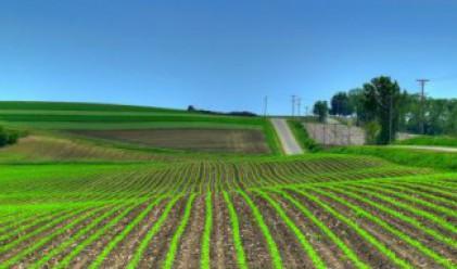 Предстои нова голяма сделка на пазара на земеделска земя у нас