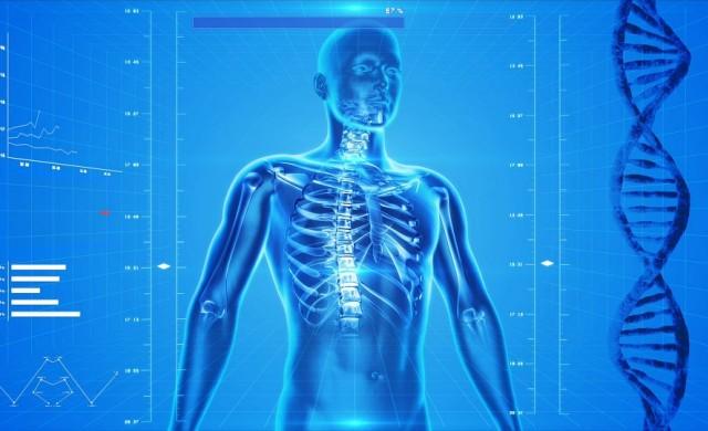 12 напълно безполезни части на човешкото тяло