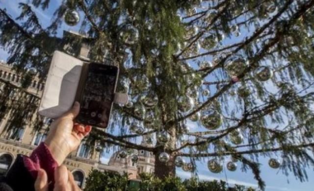 Елхата в Рим изсъхна, без да дочака Коледа