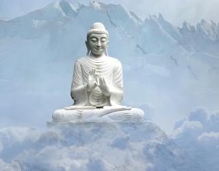 Медитирайте на 50 г., за да имате мозък на 25 г.